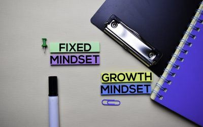 What Kind of Mindset Do You Have?